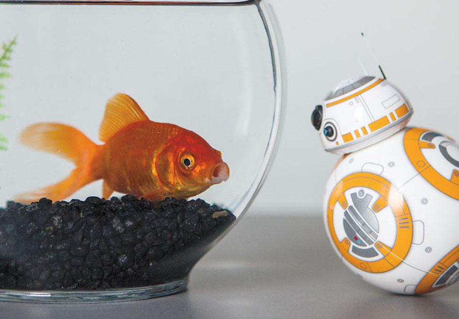 Sphero's BB8