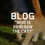 Renfrew the Cat
